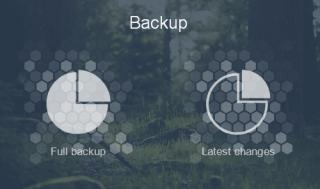 Choose type of Backup
