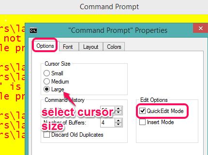 Options tab