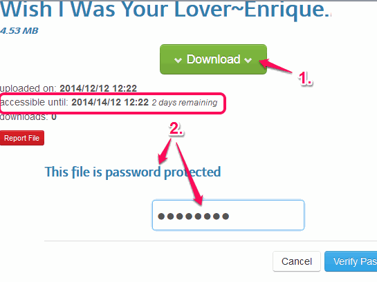 enter correct password to download the file