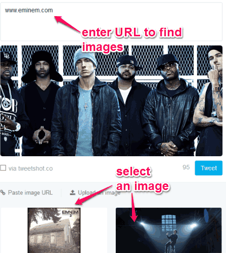 enter link to find relevant images and select your preferred image