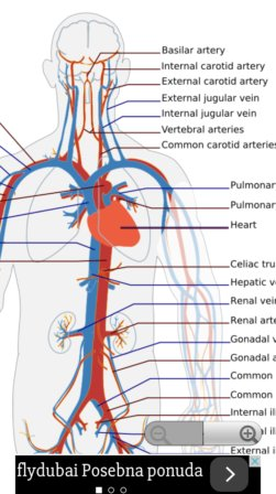 human anatomy apps android 1