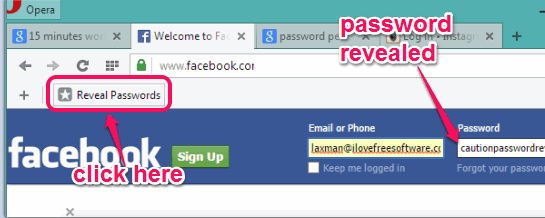 Show or Reveal Password Bookmarklet