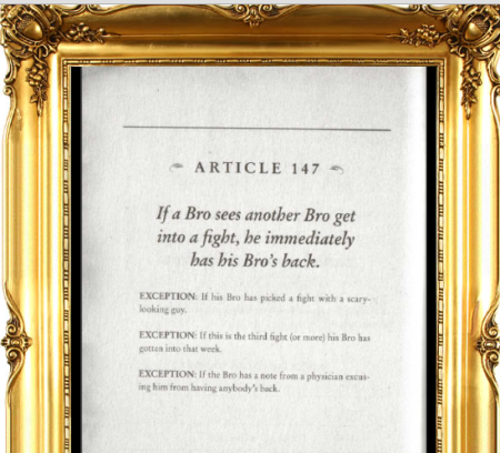 The Daily Bro Code