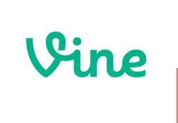 online Vine downloader-icon