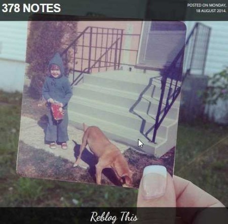 dear photograph reblog