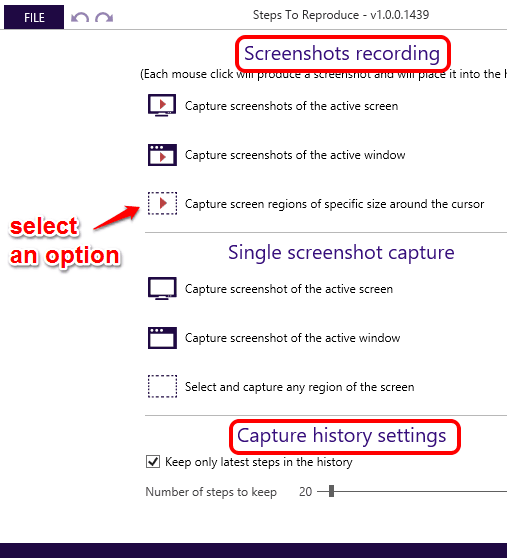 select type of screen capture