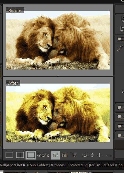 compare the original and output photos