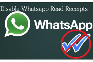 disable WhatsApp Read Receipts using Firefox add-on