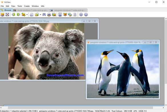 dual pane image viewer software windows 10 3