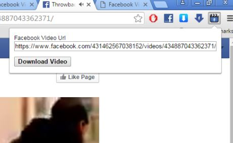 facebook video download extensions chrome 4