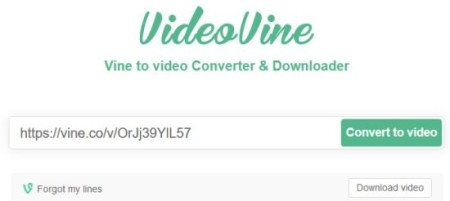 vine to video converter 1