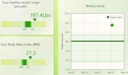 weight and bmi tracker display 1