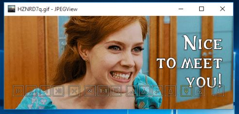 GIF viewer software windows 10 3