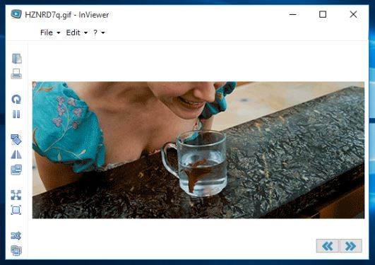 GIF viewer software windows 10 5