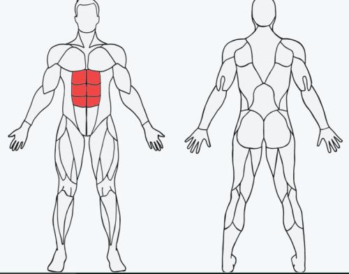 select a body part