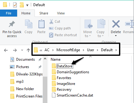 access Default folder of Microsoft Edge