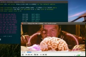 how to stream torrent video in vlc