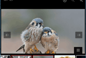 LightGallery- free image viewer with animated GIF play feature