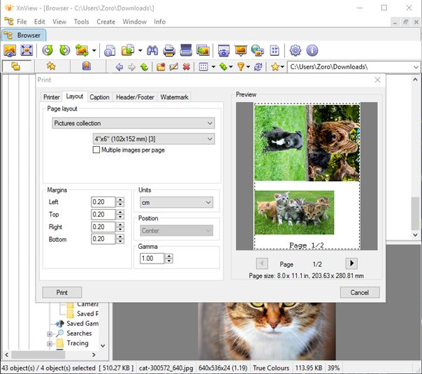 free photo software for windows 10