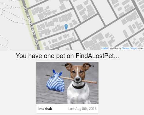 my lost pet