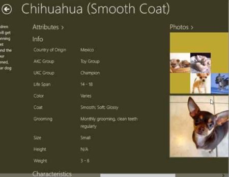 the canine catalog attributes