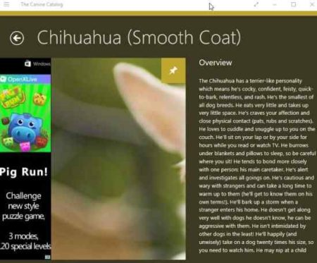 the canine catalog info