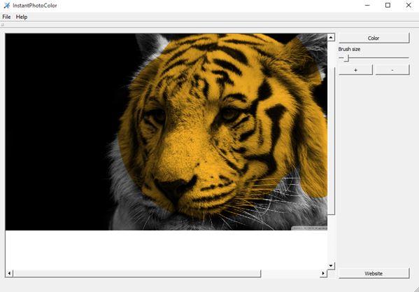 black-white-photo-coloring-software-windows-10-1
