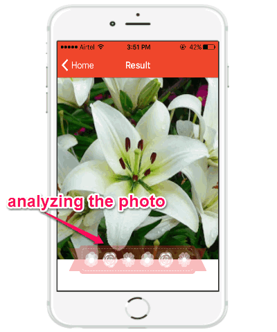 analyzing photo