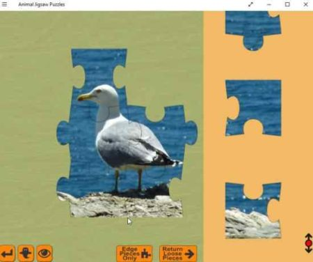 animal jigsaw puzzles solveing