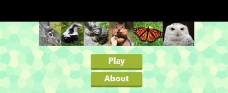 animal quiz home