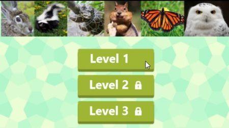 animal quiz levels