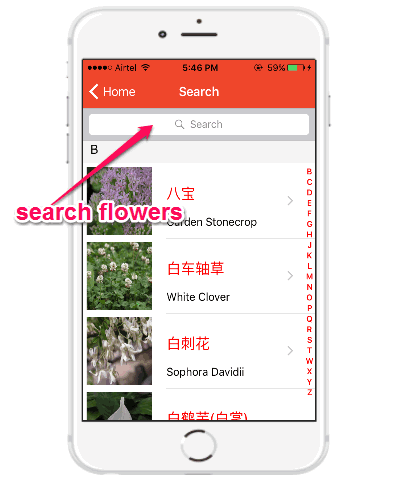 search flowers