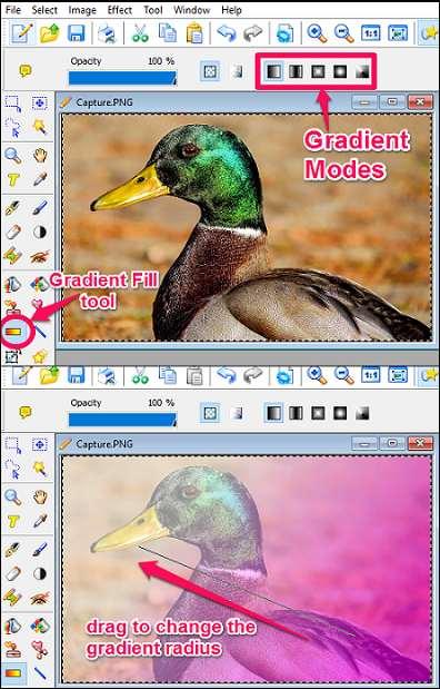 PhoXo- adding gradient