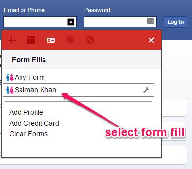 add form fields details