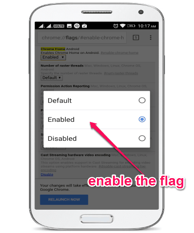 enable the flag