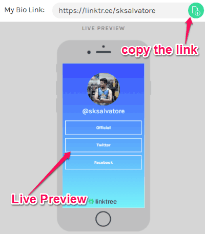 How to Add Multiple Links in Instagram Bio - Linkis com
