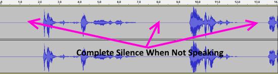 Audacity Noise Gate Waveform
