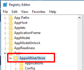 access AppxAllUserStore key