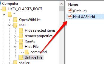 create HasLUAShield string value under unhide file