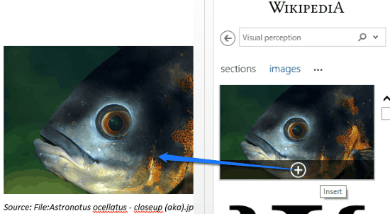 insert wikipedia images to word