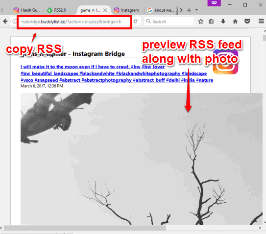 preview rss feed and copy rss url