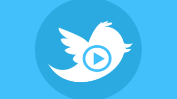 free twitter video downloader websites