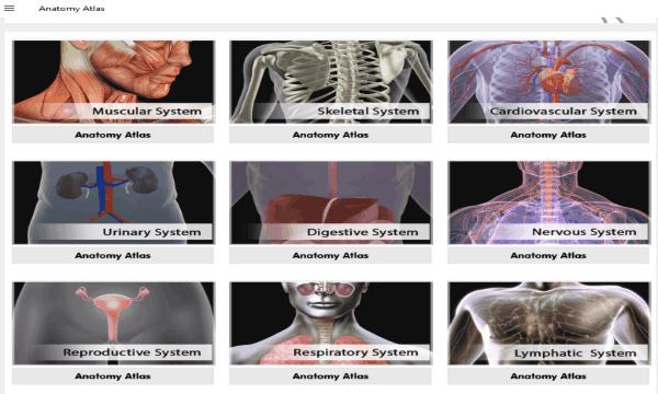 6 Best Free Human Anatomy Software For Windows 10