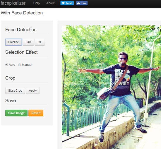 5 Best Free Websites To Pixelate Photo Online
