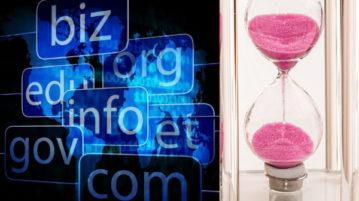 5 Free Bulk Domain Age Checker Websites
