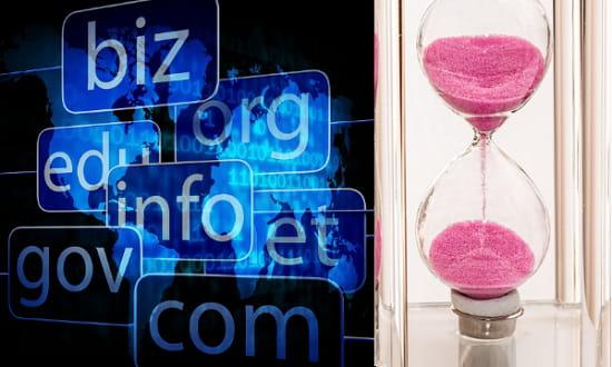Bulk Domain Age Checker Websites