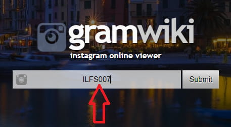 Input instagram username to gramwiki