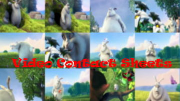 best Free Video Contact Sheet Creator Software for Windows