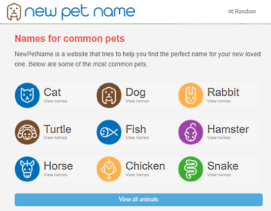 new pet name generator