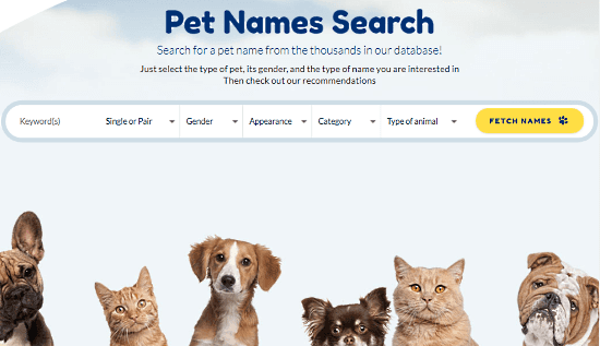 pet name search